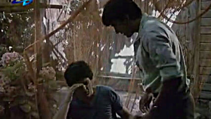 Вик за помощ (1986 г.)