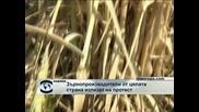 Зърнопроизводители от цялата страна излизат на протест
