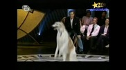 Рекорди На Гинес - Рекорд По Най - Много Подскоци На Въже Направени От Куче! 22.06.2008