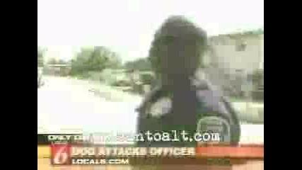 Куче Напада Полицай