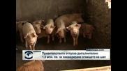 Правителството отпуска допълнителто 1,5 млн. лв. за ликвидиране огнището на шап