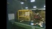 Скрита Камера - Яйца На Линията