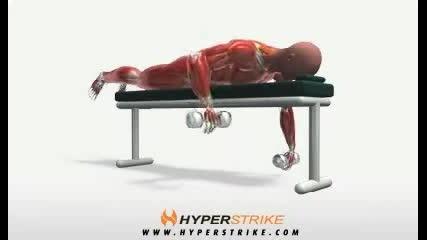 Exercise Videos- Alternating Lying Row