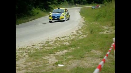 Rally Bulgaria 2010 - Vladica Rebrenovic / Radmil Radivojevic