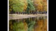 Ваня Костова Нека бъда твоята есен