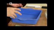 btv.bg.btv - Гъбен жулиен и Мраморен тиквен сладкиш със сирене крема