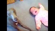 Куче Успокоява Плачещо Бебе