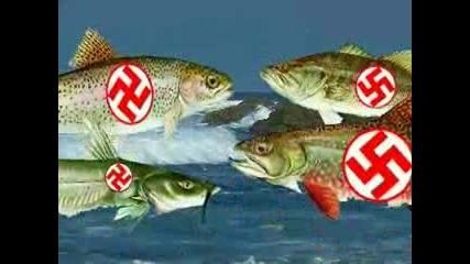 Nazi Fish