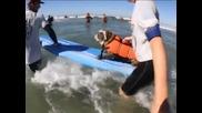 Кучета караха сърф на състезание в Калифорния