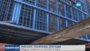 Уникална спасителна операция на животни в размирна Сирия