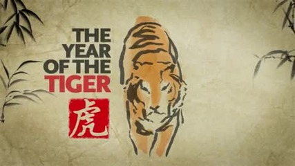 Year of the Tiger - Animation