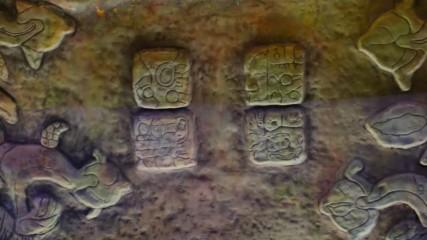 Отваряме широко вратата към света на маите (