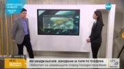 900 000 българи изнудвани за пари по телефона
