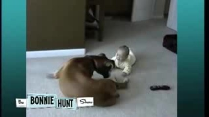 Baby and Boxer Seen on The Bonnie Hunt Show