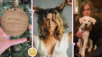 Коледната украса на Дженифър Анистън вбеси хората онлайн: Прекрачи ли границата актрисата?