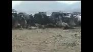 Взрив - Авганистан на Боеве с Кучета и половината Публика...