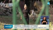 Откриха труп край София
