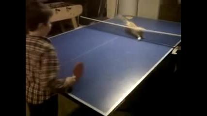 Котка играе пинг понг и се справя страхотно !