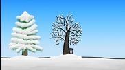 Как дърветата оцеляват през зимата?