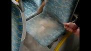 Колко са чисти автобусите