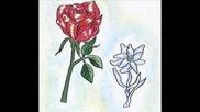 Изкуствената Роза И Планинското Цвете_0001