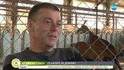 """""""Да хванеш гората"""": Швейцарски бизнесмен с ферма за кози в българско село"""