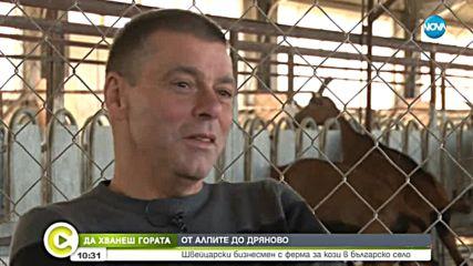 'Да хванеш гората': Швейцарски бизнесмен с ферма за кози в българско село