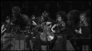 Лука Шулич - Музикална тема из филма