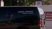 Supernatural - Дийн говори със животните - смях
