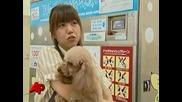 Душ кабинка за куче