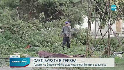 Отнесени покриви и съборени дървета след бурята в Тервел
