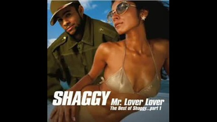 Shaggy - Mr.bombastic