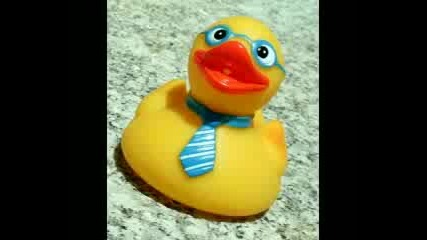 rubber duck song