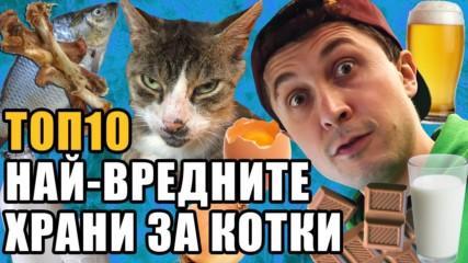 Топ 10 Най-вредните храни за котки
