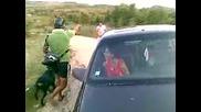 policai proverqvat za narkoticismqx