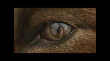 The Twilight Saga: New Moon - Tv Spot 1: Event (hd)