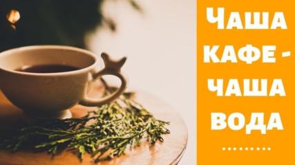 Чаша кафе - чаша вода
