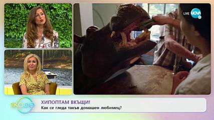 """Ася разказва за необикновените приятелства между хора и животни - """"На кафе"""" (03.07.2020)"""
