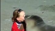 Дружелюбен тюлен и туристка