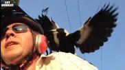 Велосипедист срещу птици