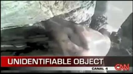 Труп на извънземно в Панама се оказа ленивец