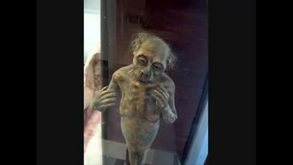 Paranormal Creatures & Cryptids
