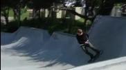 Adidas Skateboarding Dennis Busenitz Shoe