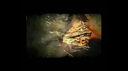 Absurd Minds - Herzlos