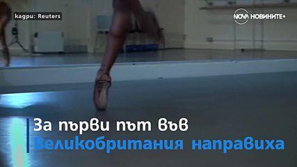 Килим от червени макове в Мюнхен и нов вид балетни обувки