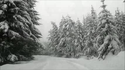 Зимна приказка