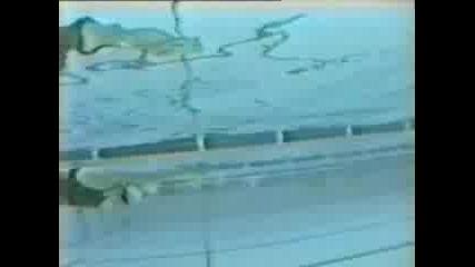 Butterfly - Swimcitymediacentre - Angelakenned