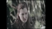 Celine Dion - I Surrender(smallville)