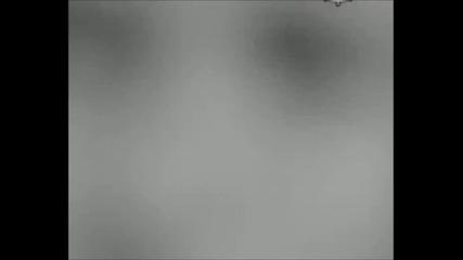 Залавянето и обесването на Васил Левски