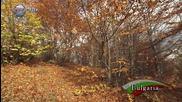 Картини от България - Есен